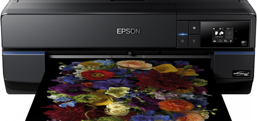 Epson SC-P800